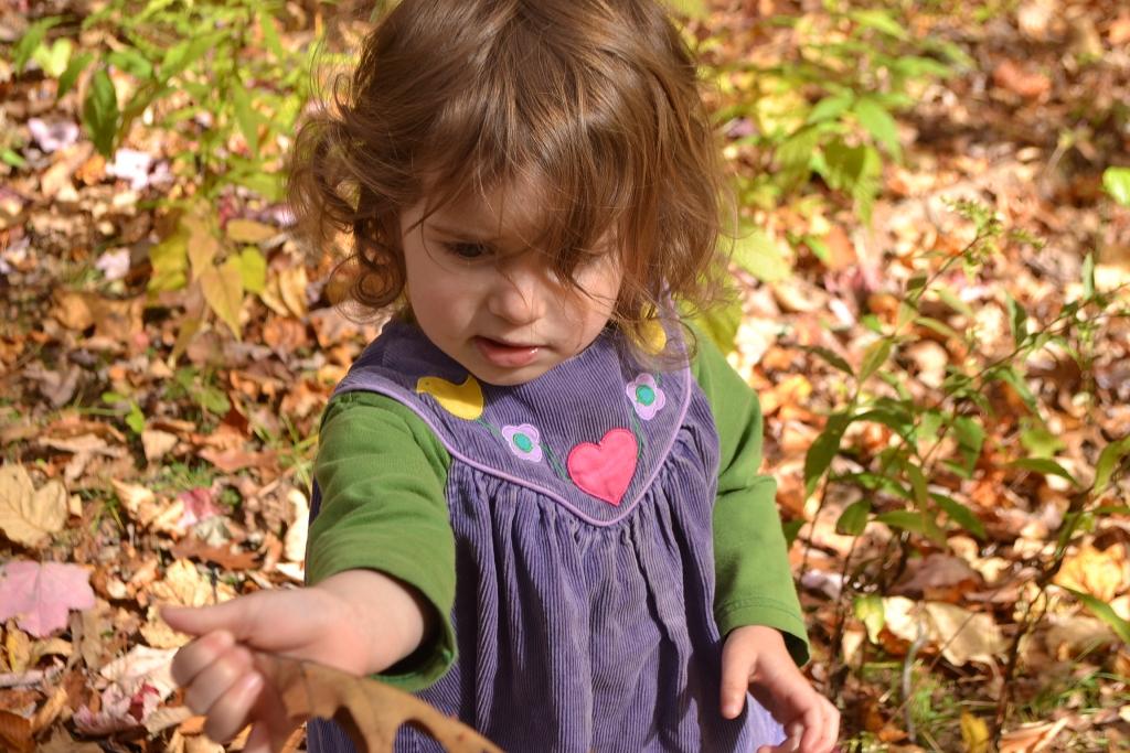 Laurel in the Leaves