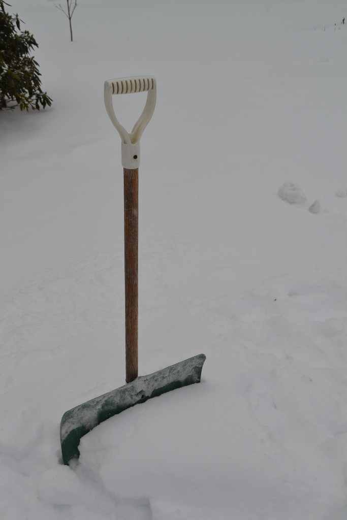Shovel in the Snow