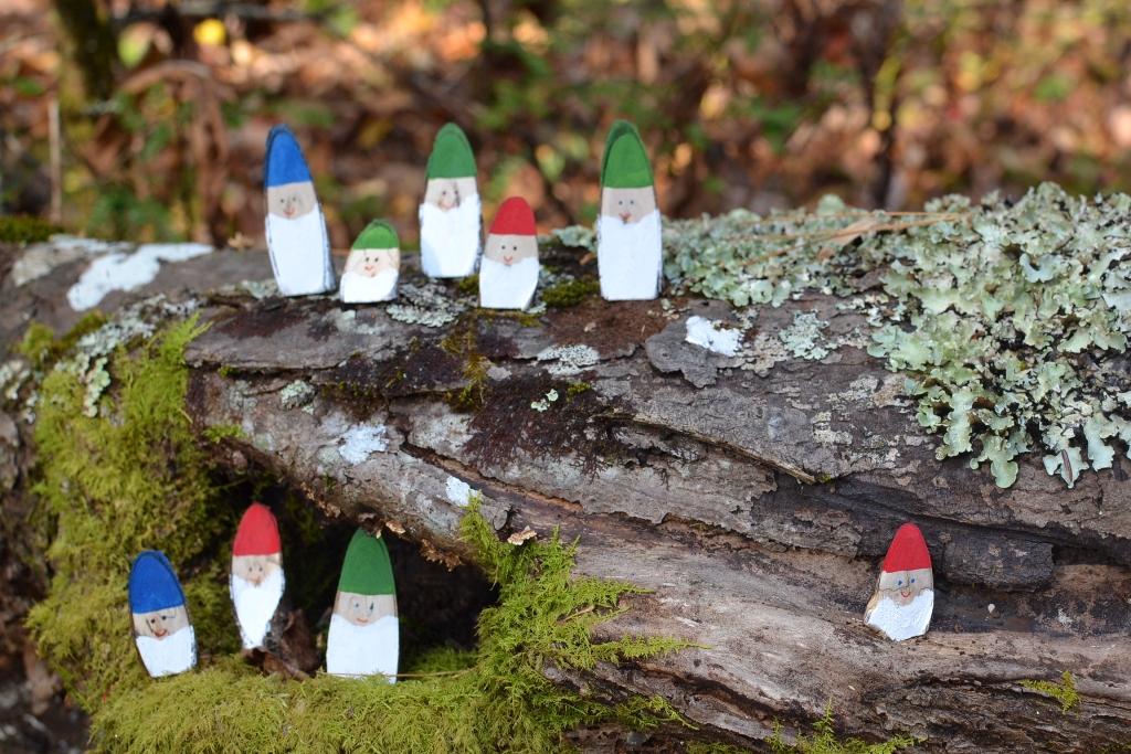 Wee Gnomes