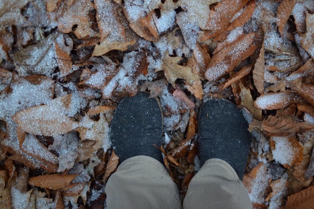 Snow and Sleet