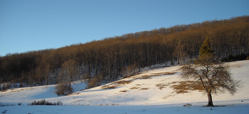 Grinstone Snow