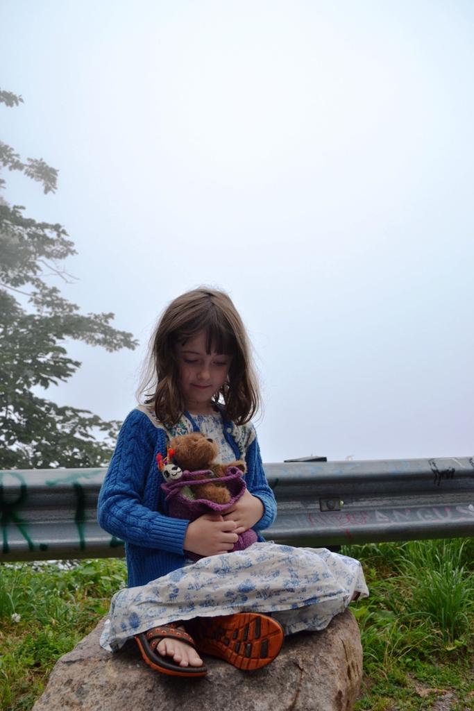 Foggy Vista