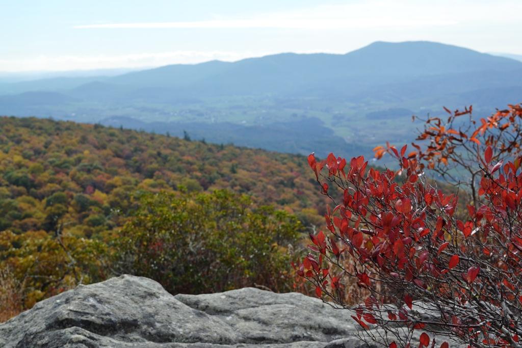 Autumn ridge