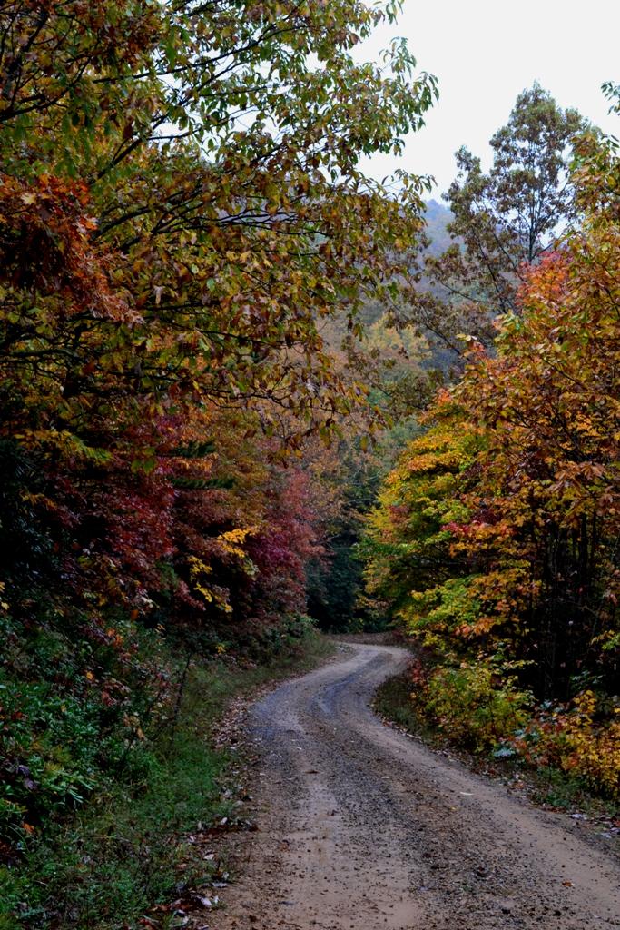 Glade Mountain Road