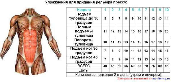 Самые эффективные упражнения на пресс для мужчин и женщин