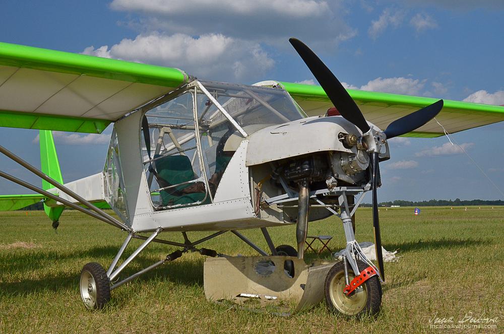 alas verdes11