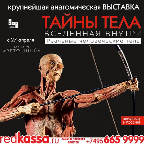 фото урок анатомии от аллы юрьевны