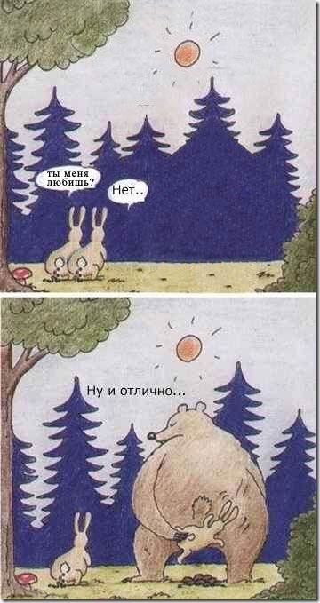 коммерческой картинки прикол медведь и заяц жители