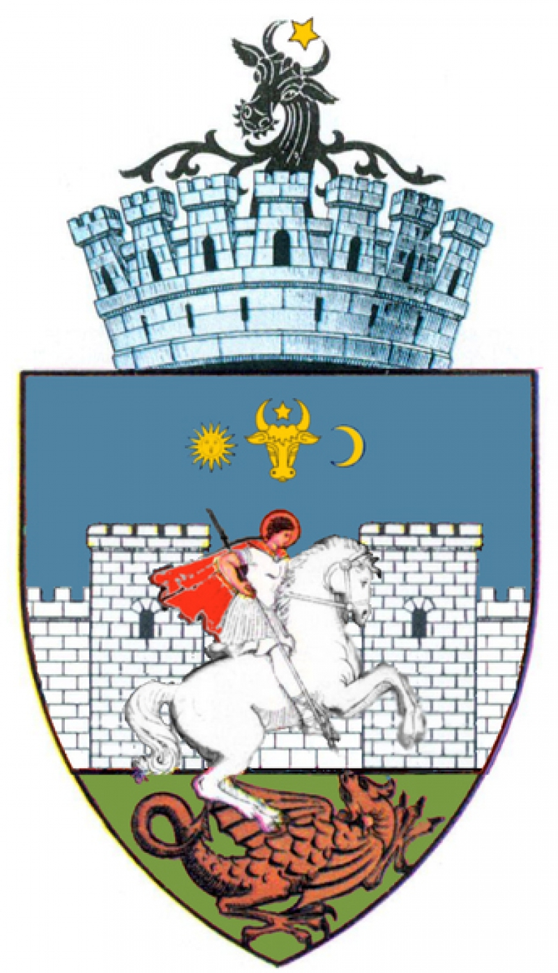 герб Сучавы.jpg