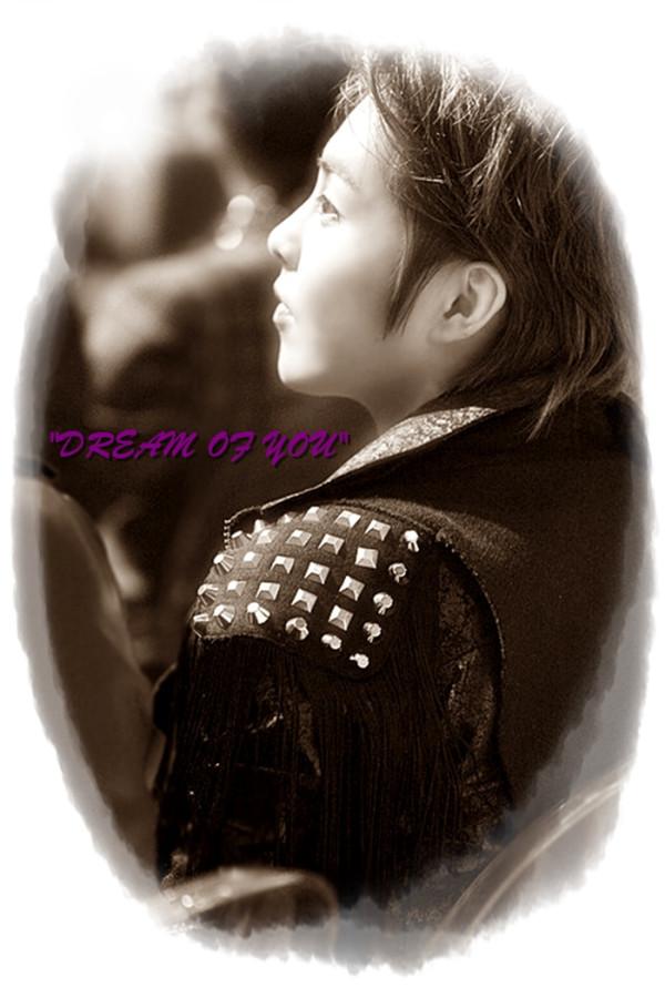 xiumin dream of you
