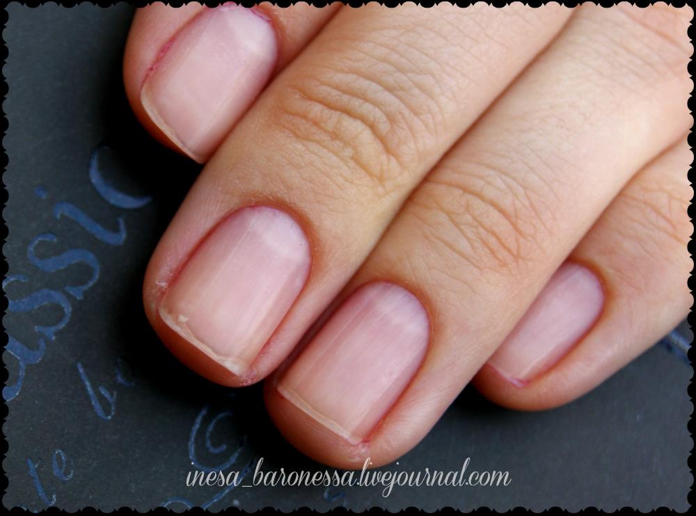 Фото ногтей коротких без лака