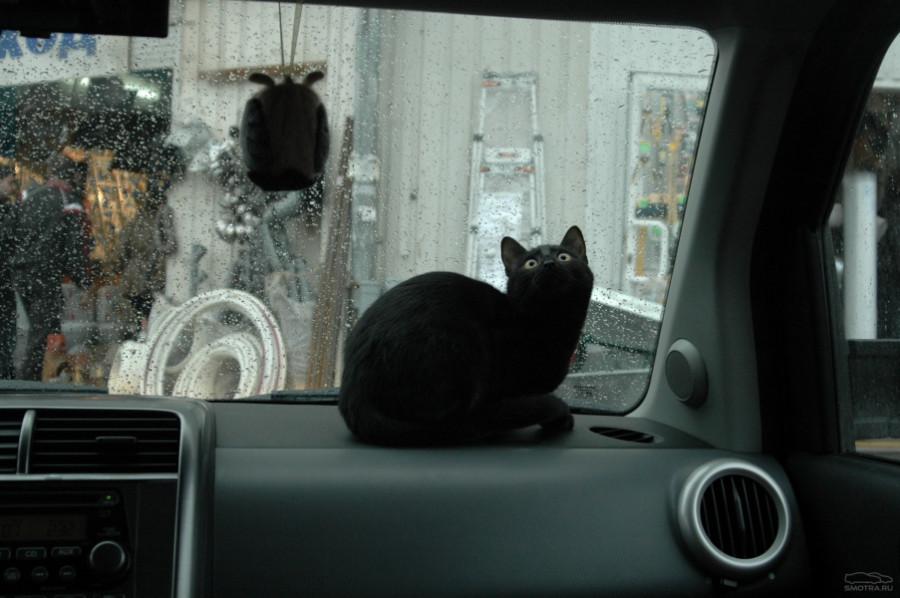 Чу в машине