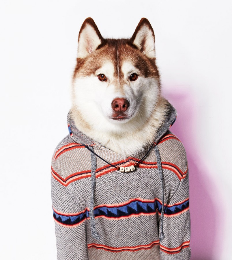 American_Eagle_Outfitters_23