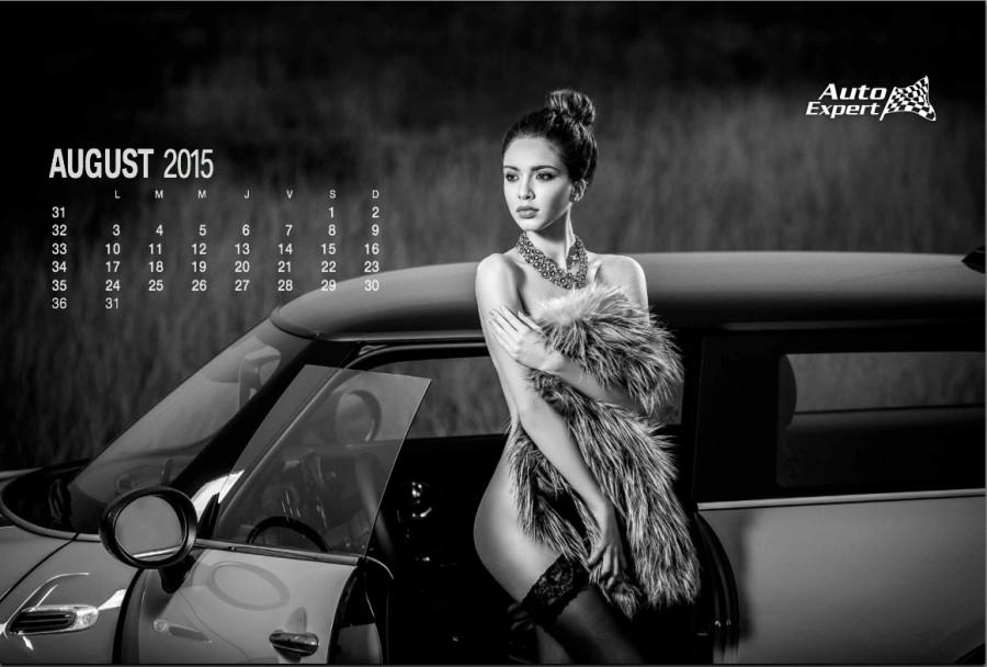 AutoExpert - Official Calendar 2015