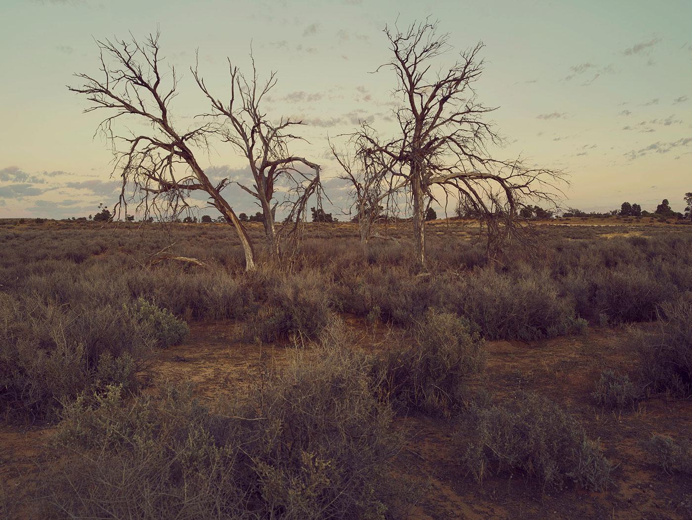 The remnants | фото Jonathan May и Ian Connor
