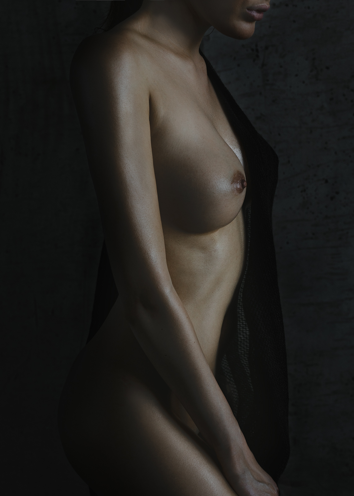 dark bride / Anton Montbrillant