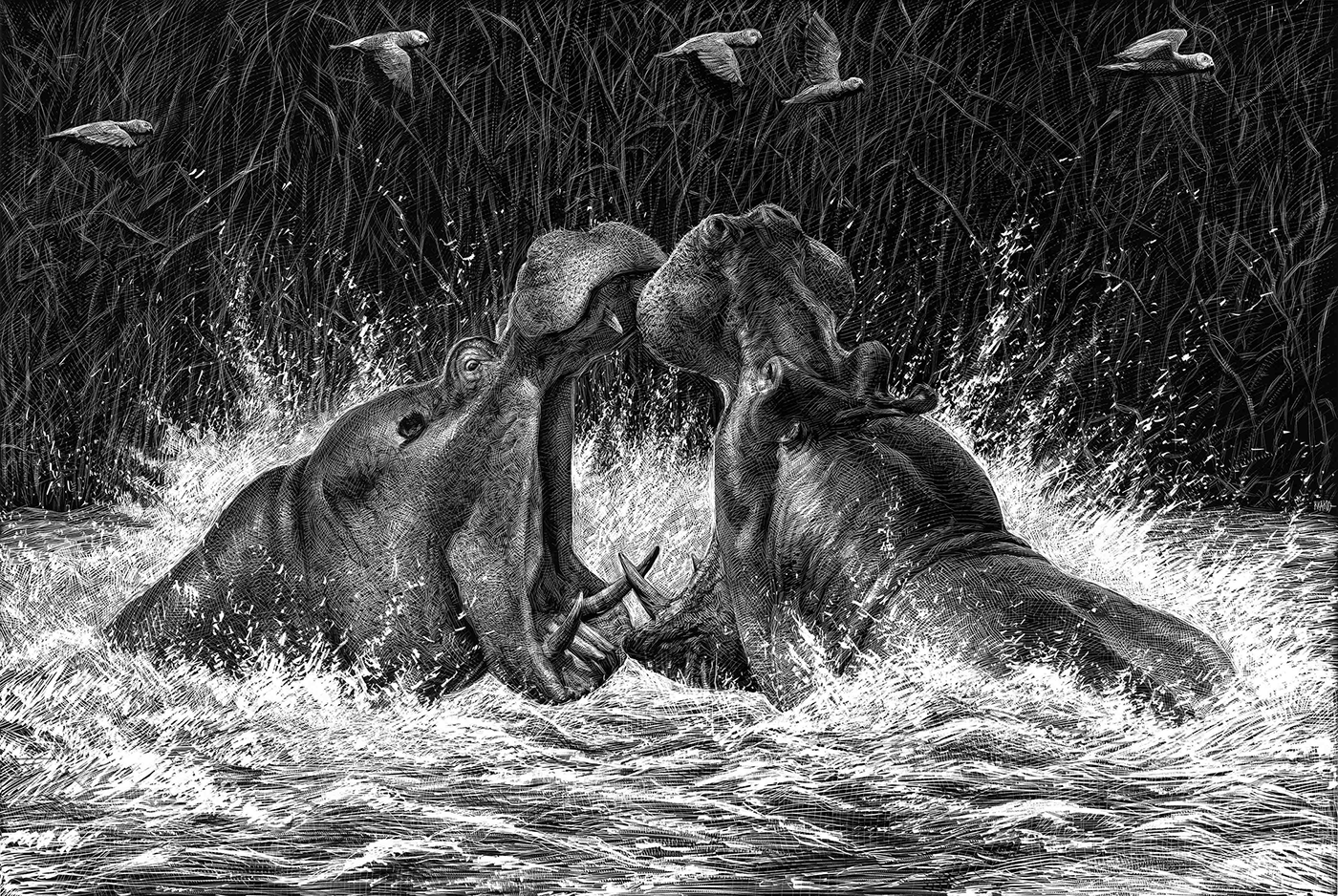 El Animal Ilustrado / работы Ricardo Martinez