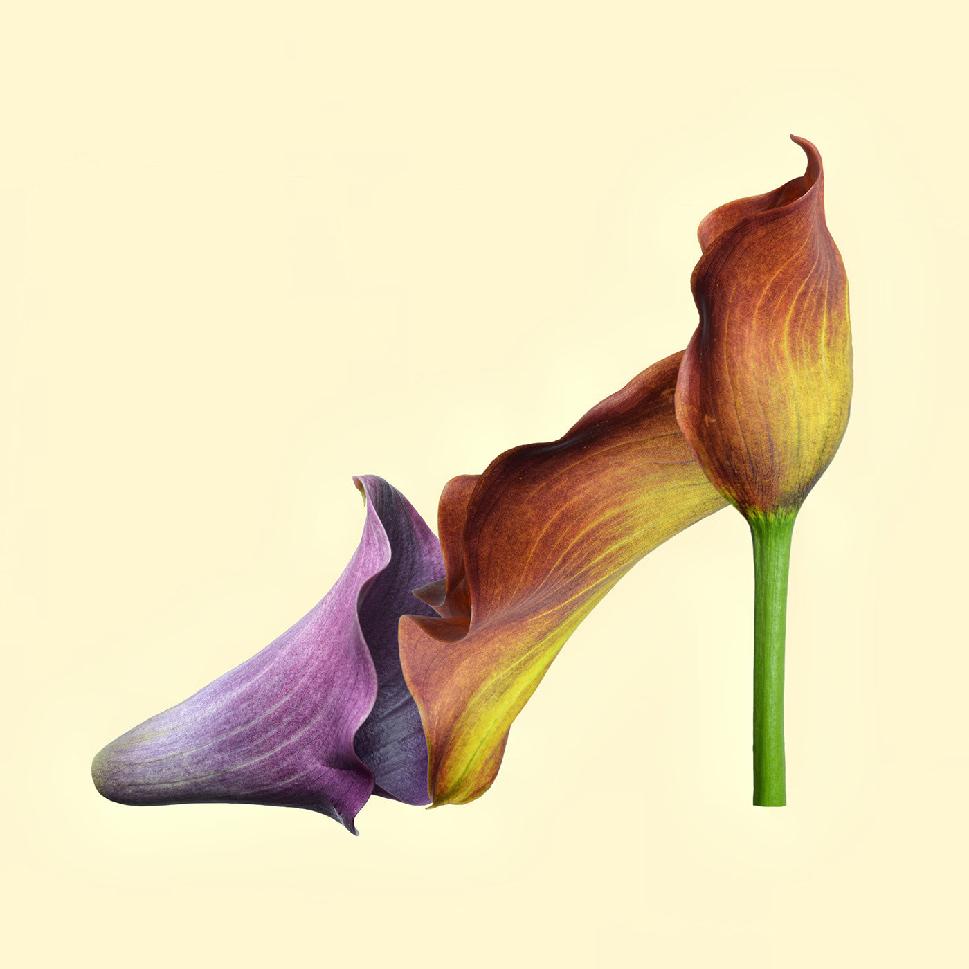 Flower Heels / фото Bettina Güber