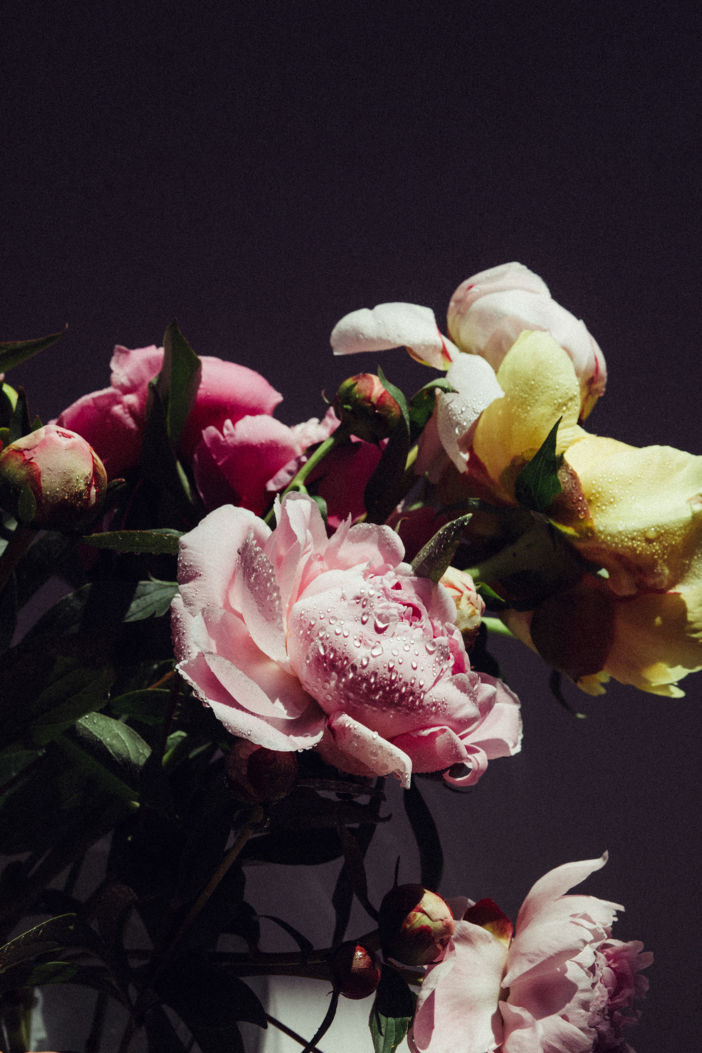 with flowers / фото Marta Syrko