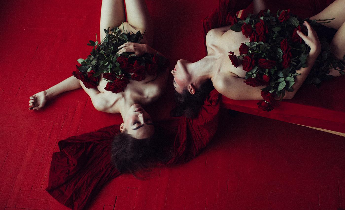 Бордовые розы / фото marta syrko