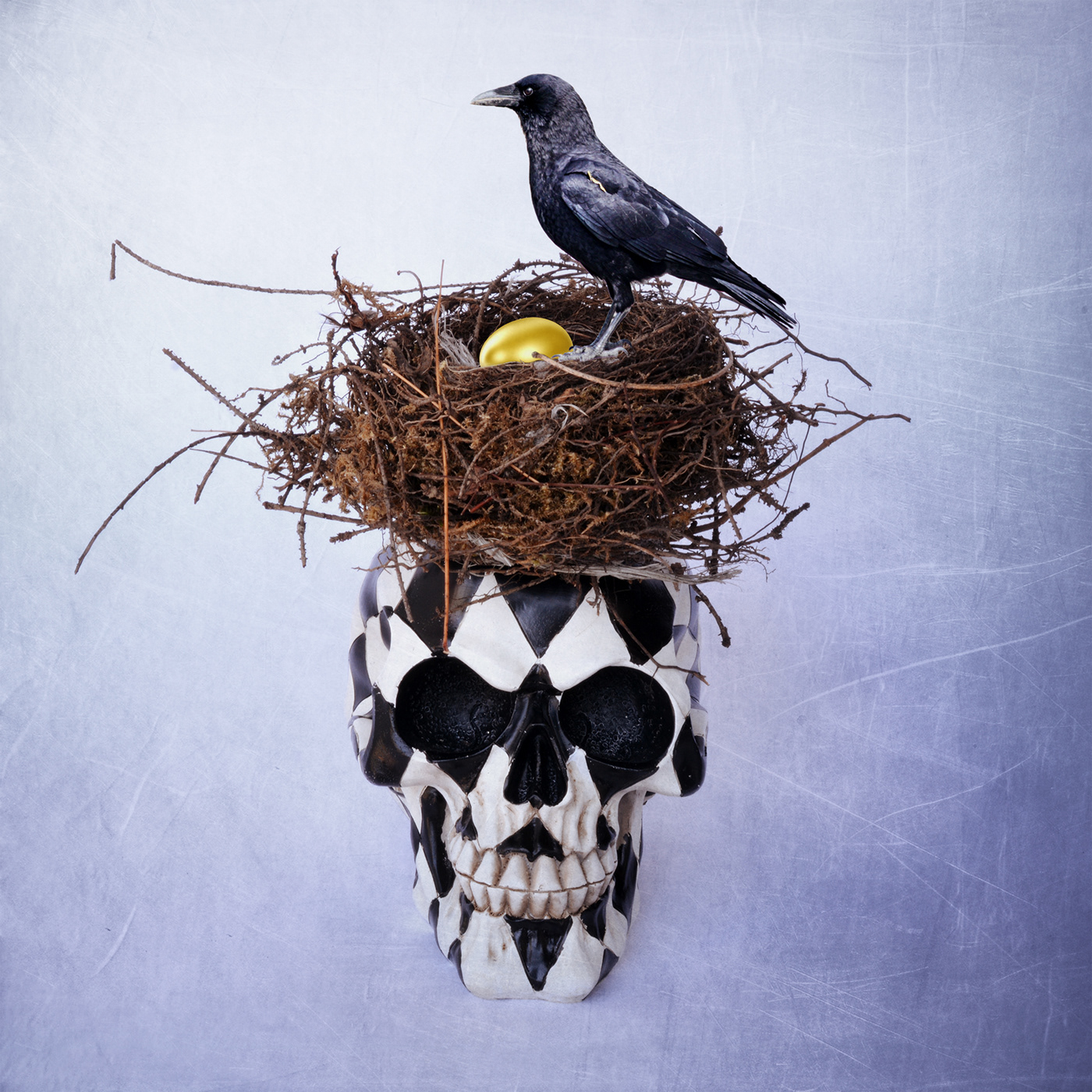 Skulls / фото Bettina Güber