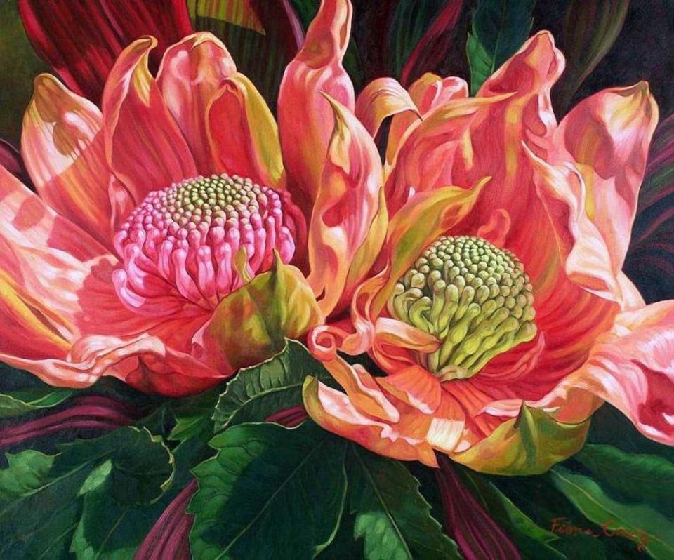 Цветы Fiona Craig