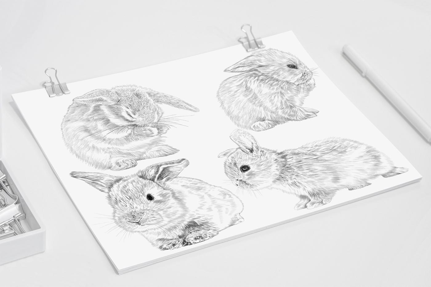 Cute Bunnies - Illustrated napkins / рисунки  Mariateresa Ingegnatti