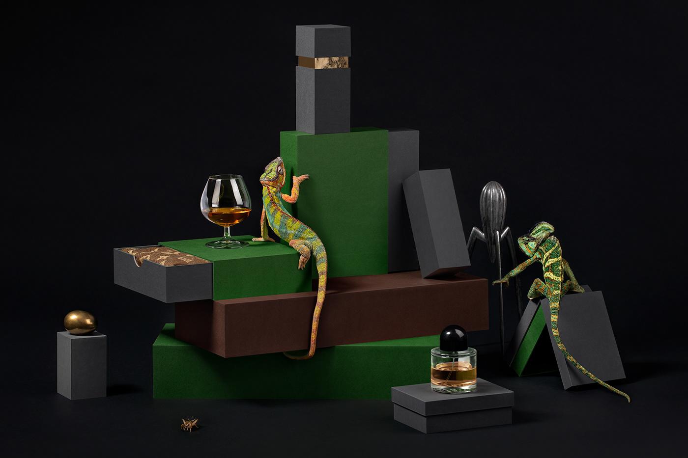 Göteborgstryckeriet - Rigid Boxes Campaign