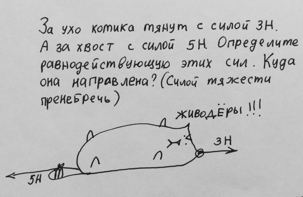 Физика в котиках
