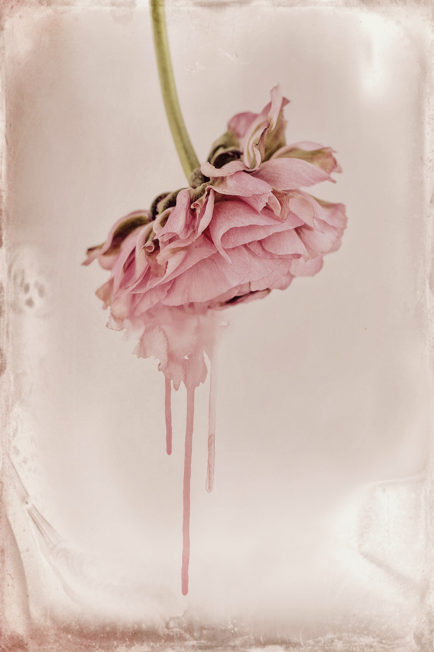 Visual Poetry / фото Bettina Güber