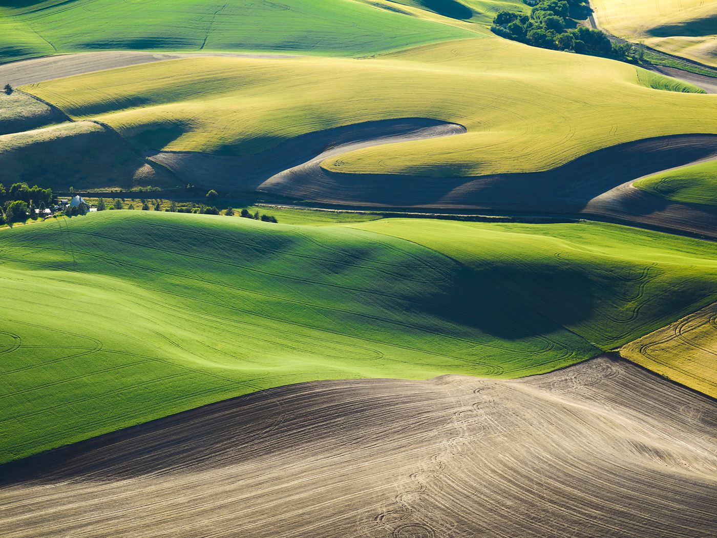 The Palouse / фото Mitchell Rouse