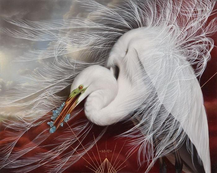 птицы Josie Morway