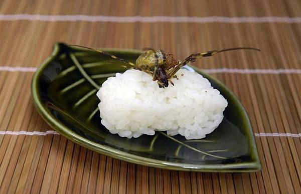 суши 1