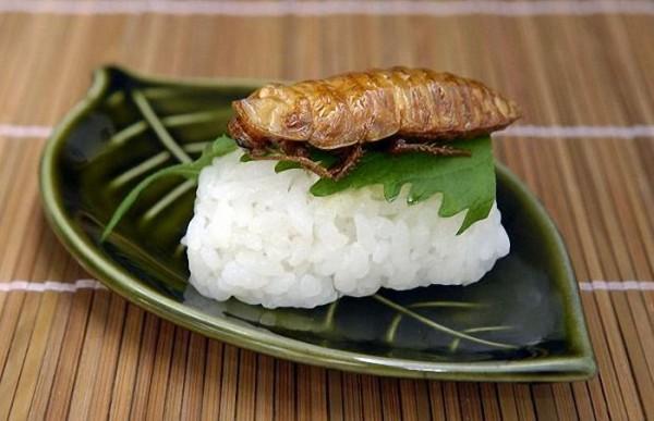 суши5
