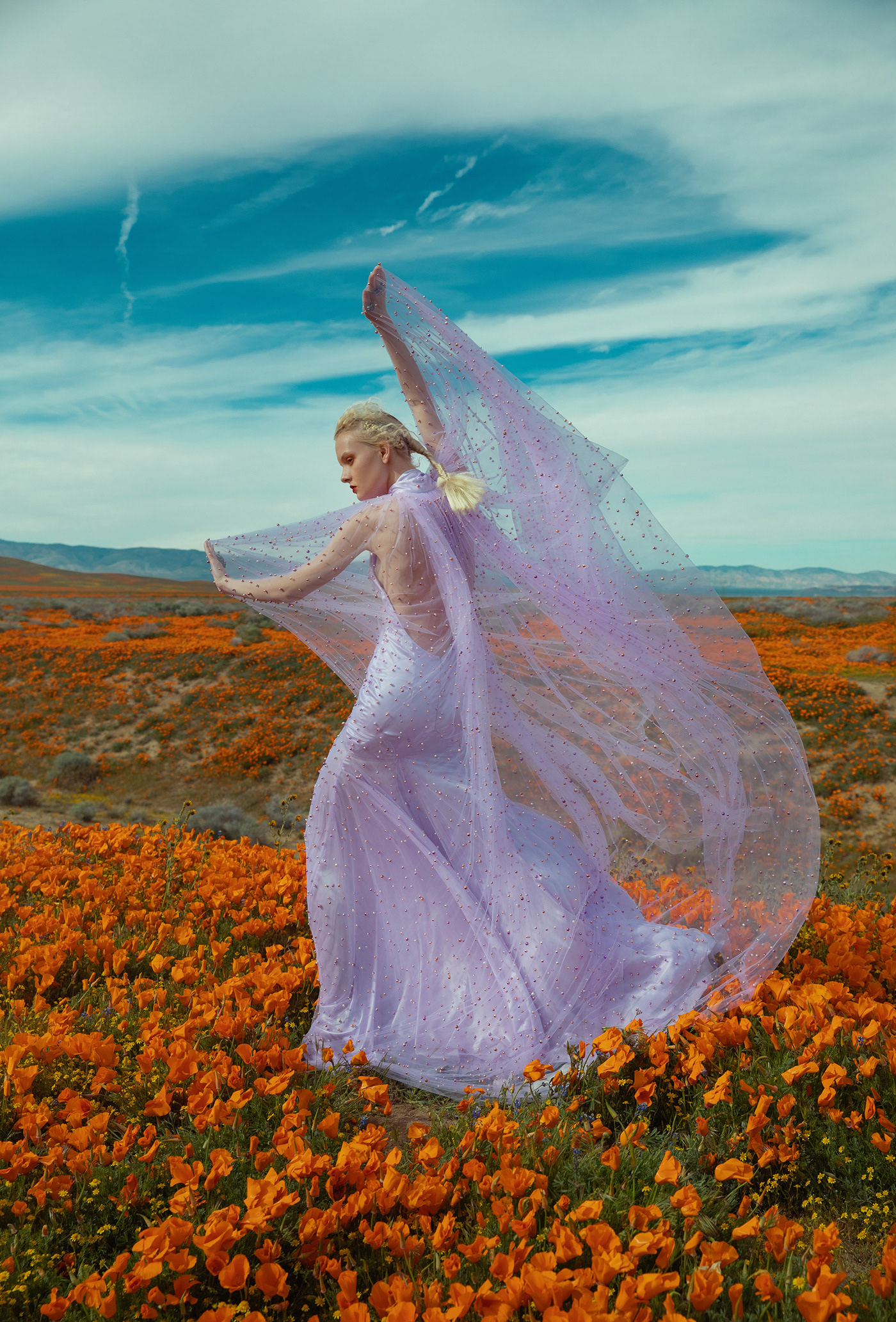 dreams of poppies / фото Ekaterina Belinskaya