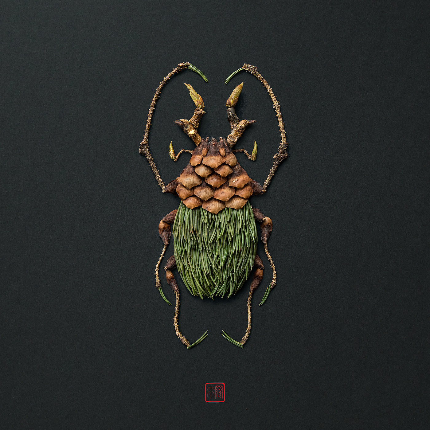Natura Insects & Animals / работы Raku Inoue