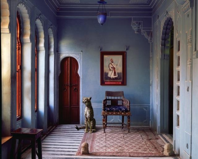 zhivotnye-v-hramah-4