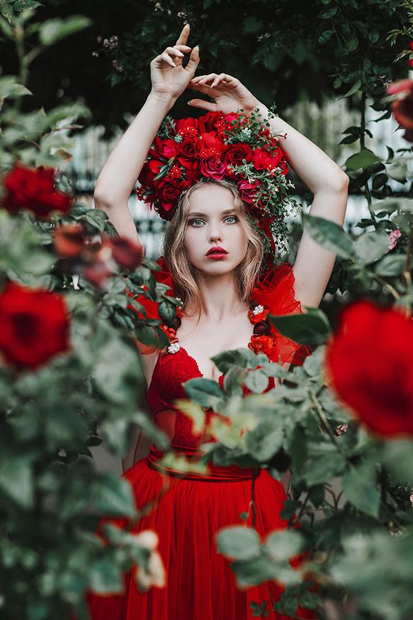 Red Rose / фотограф Jovana Rikalo