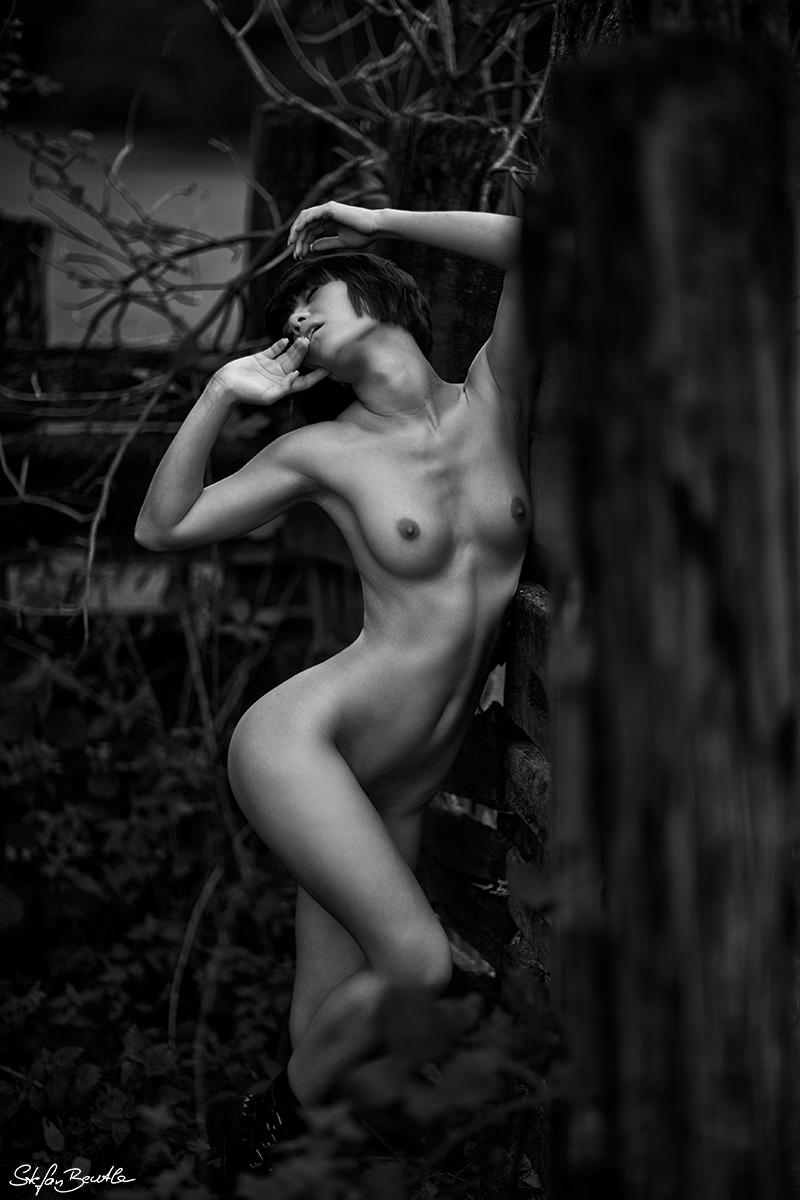 Sanctum / фотограф Stefan Beutler