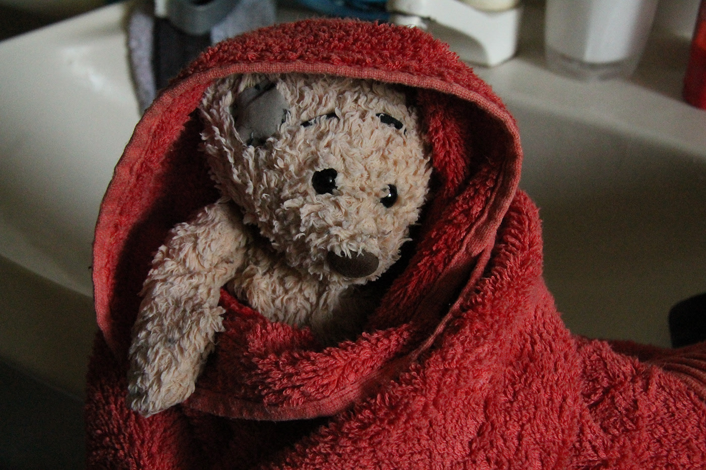A bears life / фотограф Susanne Enger