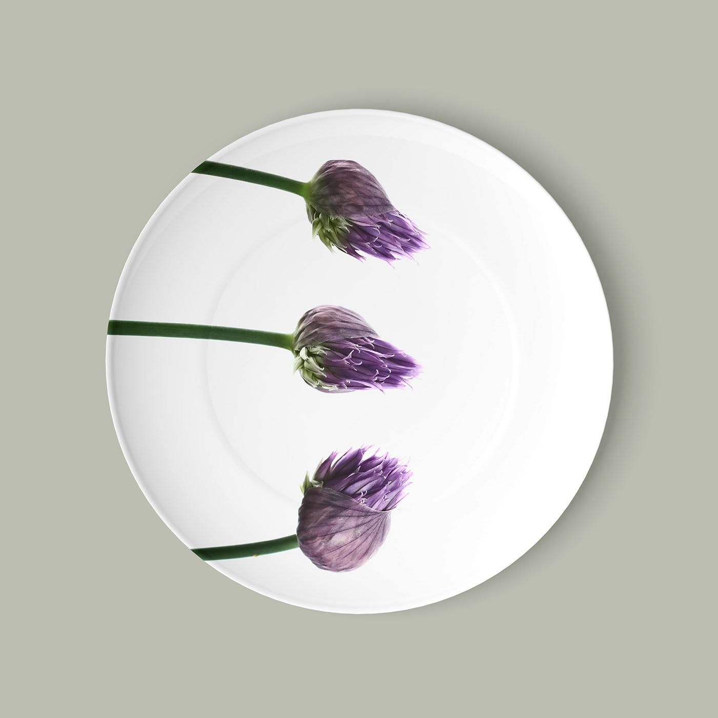 Plates / фотограф Bettina Güber