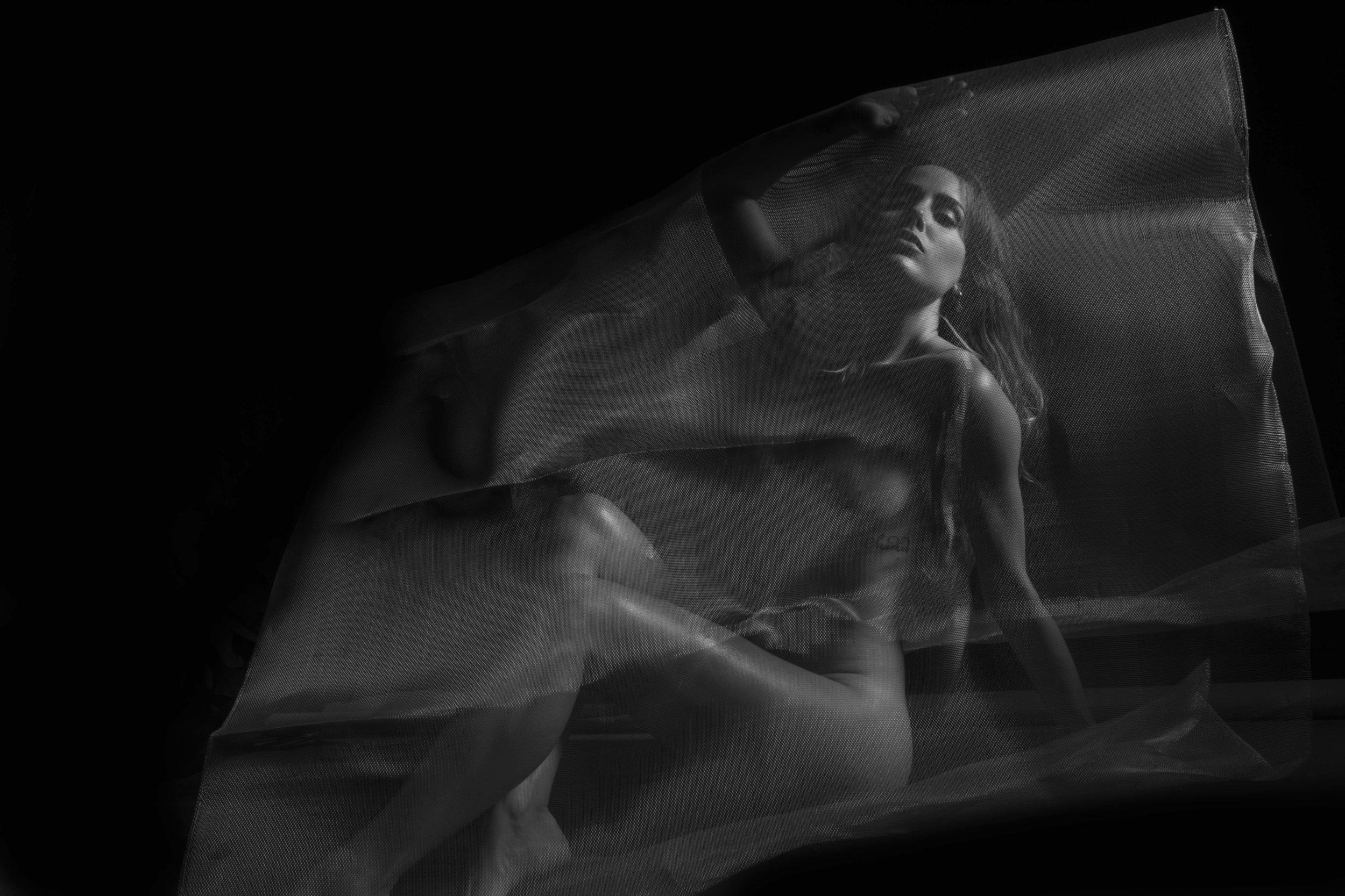 Sadie Gray by Sandro Cecchini
