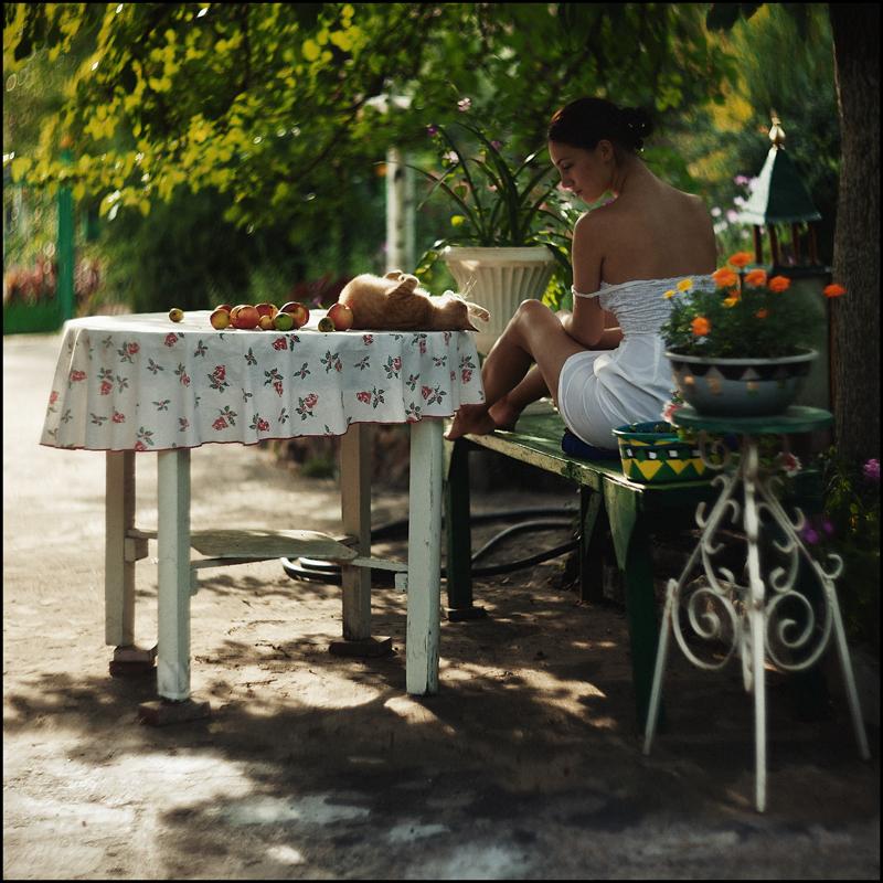 Яблоки созрели / фотограф sasha