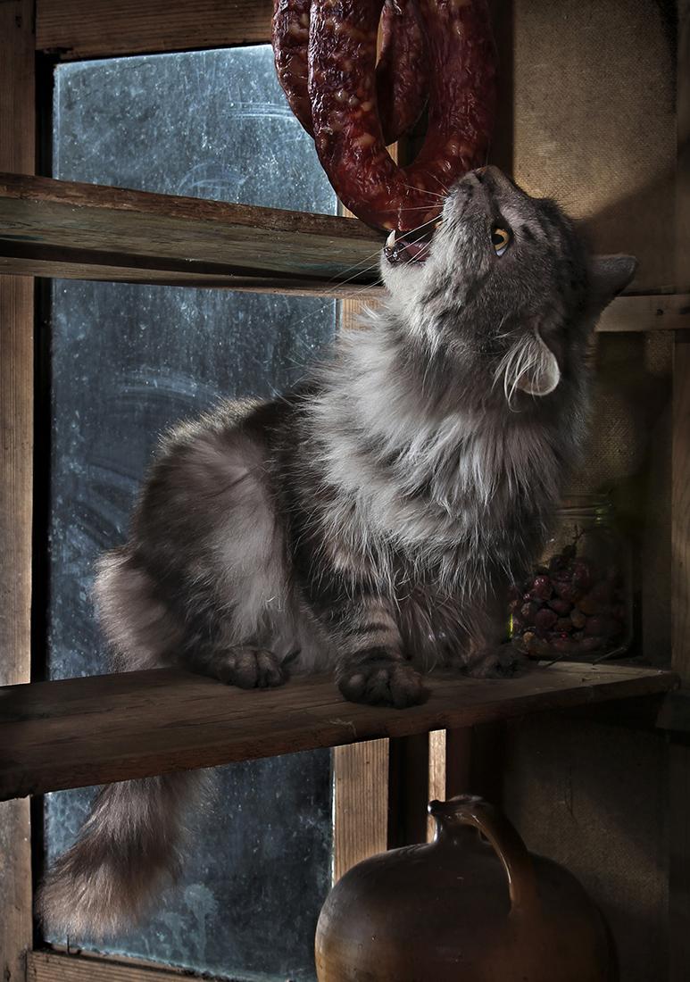 Вдруг как в сказке скрипнула дверь / фотограф Светлана Павловская