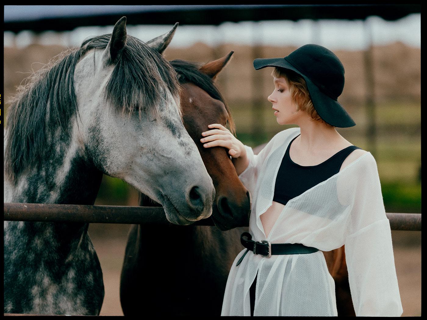 Cows, horse and Pauline / фотограф Alex Bond