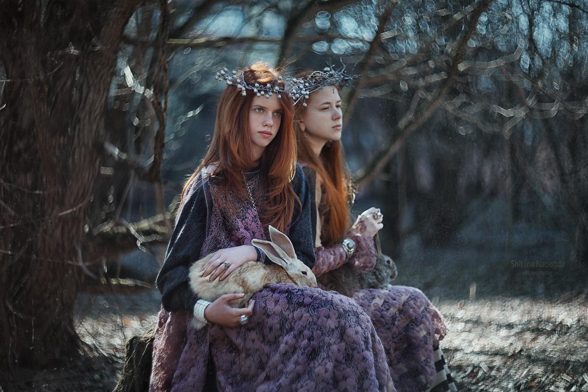 Лесная история / фотограф Надежда Шибина