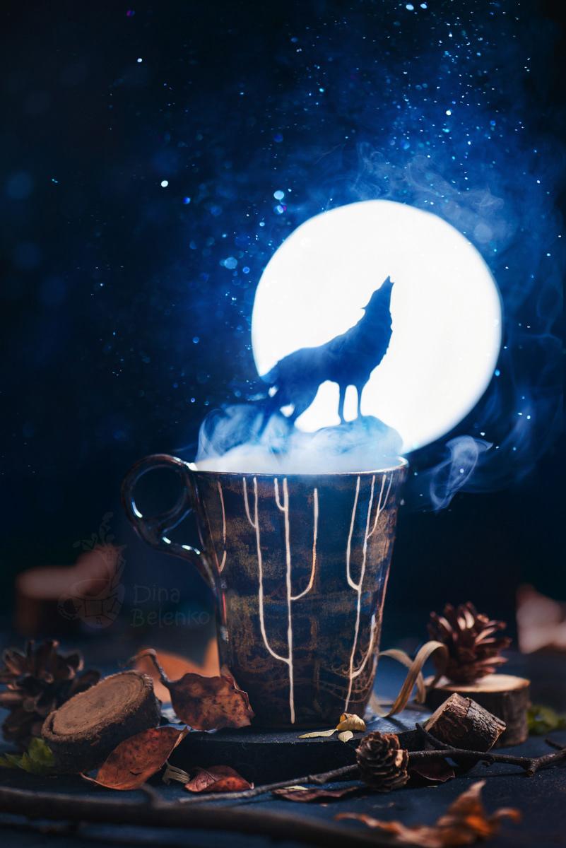 Magic, books and dragons / фотограф Dina Belenko