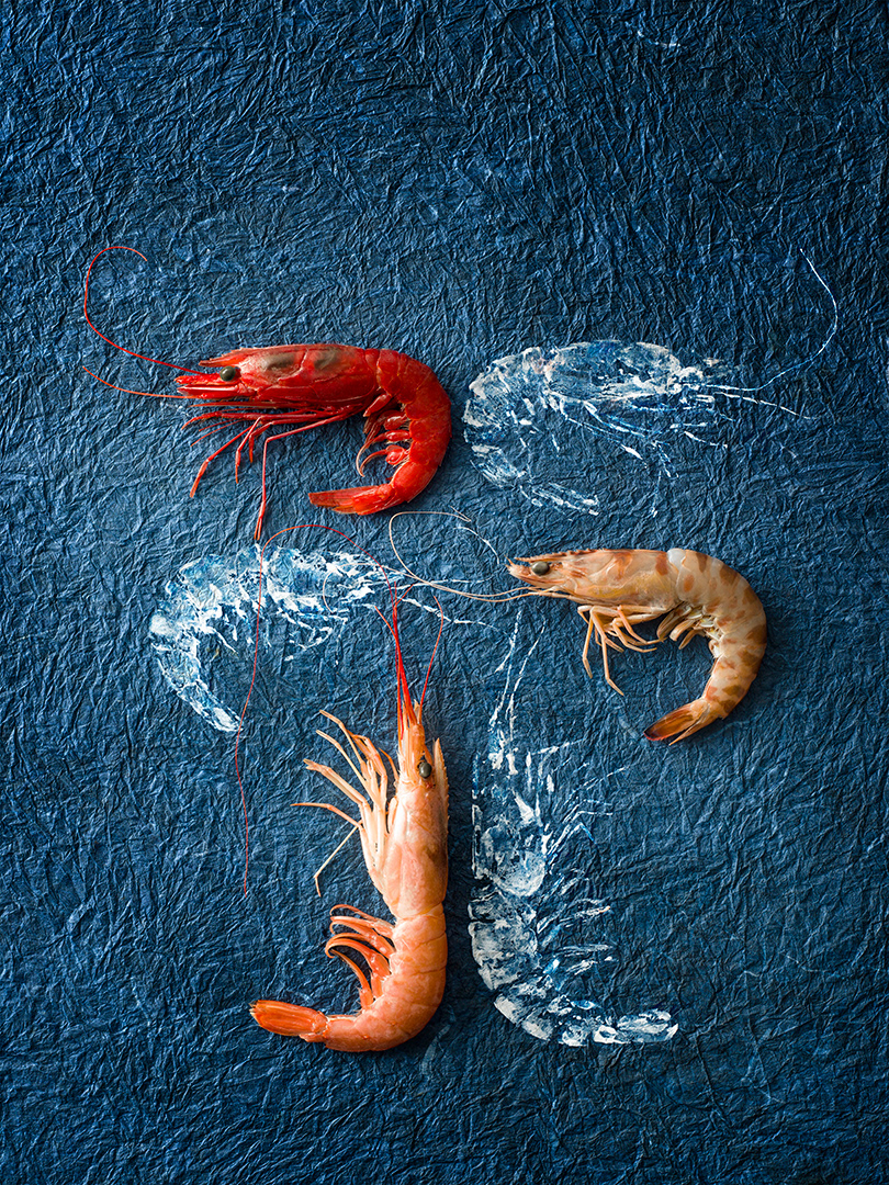 FISH ASHORE TO PIXEL BEACH / фотограф Maurizio Lodi