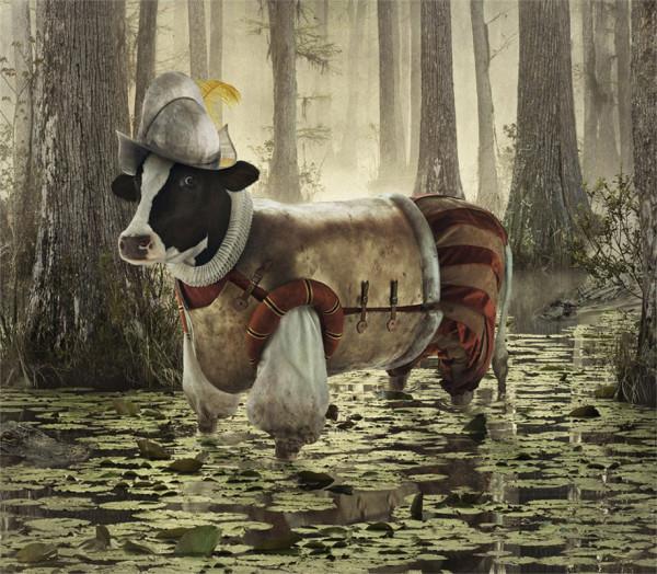 cows-7