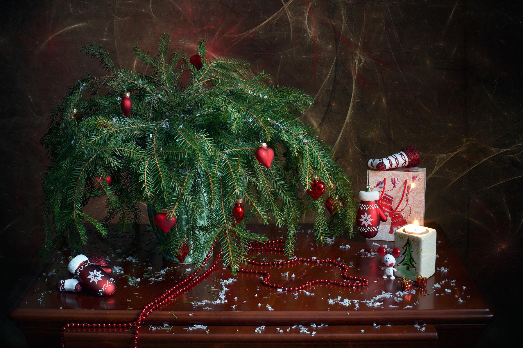 Про Старый новый год/ фотограф Миронова Мила